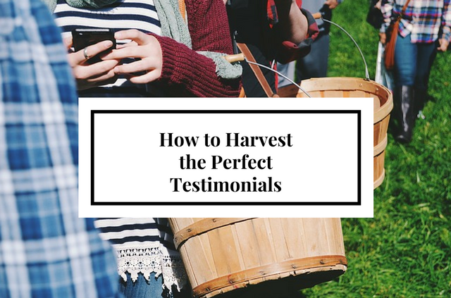how to harvest the perfect testimonial